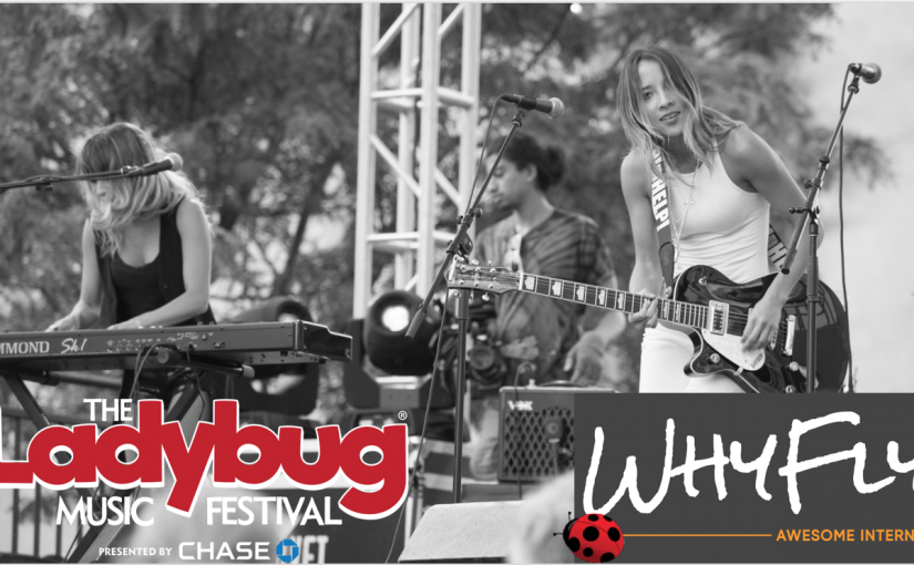 WHYFLY is Lighting Up Ladybug Festival with AWESOME INTERNET